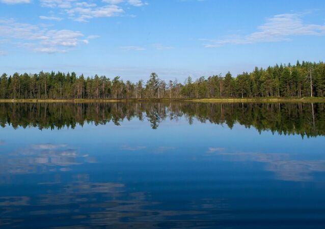 Dużą część Karelii zajmują gęste lasy, w których można spotkać zarówno małe źródełka, jak i duże wodospady. Szczególnie wyjątkowo wygląda wśród gąszczu drzew tafla leśnego jeziora.