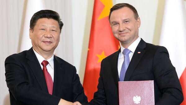 Xi Jinping i Andrzej Duda - Sputnik Polska