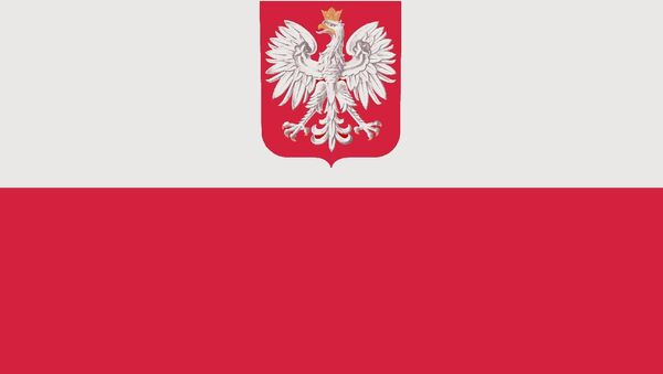 Flaga Polski. - Sputnik Polska