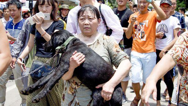 Aktywistka z uratowanym przed ubojem psem na festiwalu psiego mięsa w Chinach - Sputnik Polska