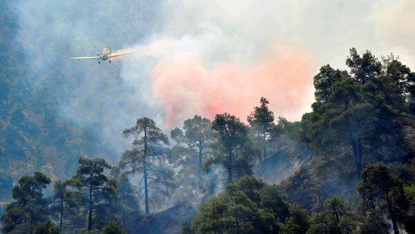 Gaszenie pożarów w rejonie gór Troodos na Cyprze - Sputnik Polska
