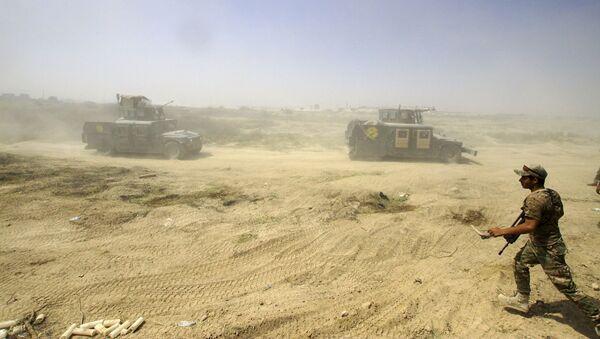 Ofensywa irackiej armii na Falludżę - Sputnik Polska