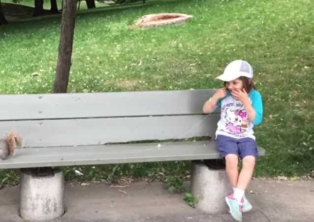 Wiewiórka wyrywa ząb dziewczynce.