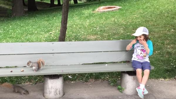 Wiewiórka wyrywa ząb dziewczynce. - Sputnik Polska