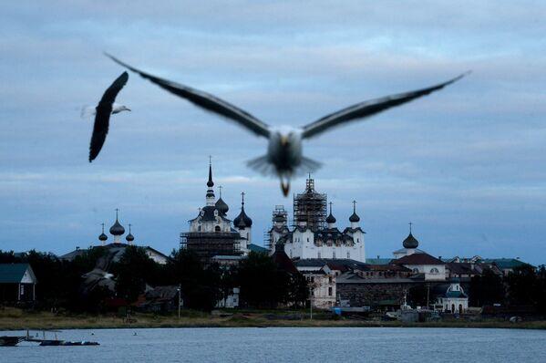 Widok na Monastyr Sołowiecki na Wyspie Sołowieckiej w obwodzie archangielskim - Sputnik Polska