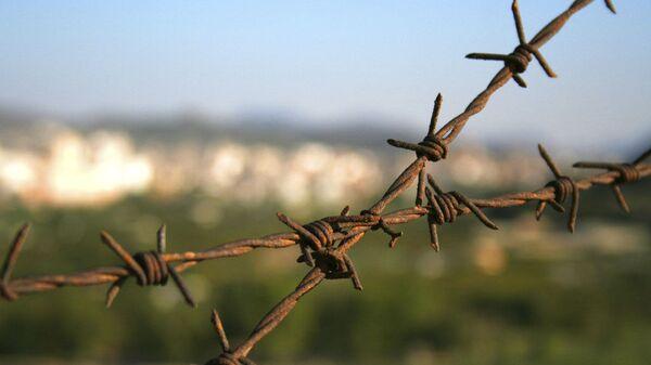 Drut kolczasty - Sputnik Polska