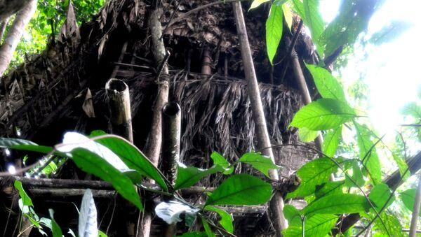 Szałas w wietnamskiej dżungli, w którym żyli Wan Than i Ho Wan Lang - Sputnik Polska