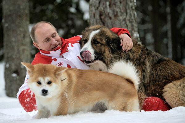 Prezydent Rosji Władimir Putin na wycieczce z psami - Sputnik Polska