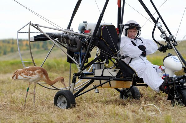 Władimir Putin na motolotni kieruje stadem żurawi - Sputnik Polska