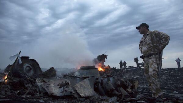 Katastrofa malezyjskiego Boeinga na Ukrainie - Sputnik Polska
