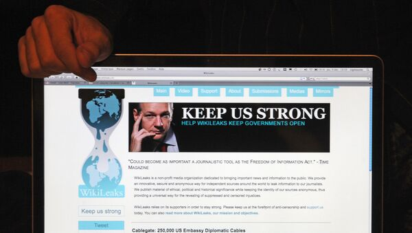 Strona Wikileaks - Sputnik Polska