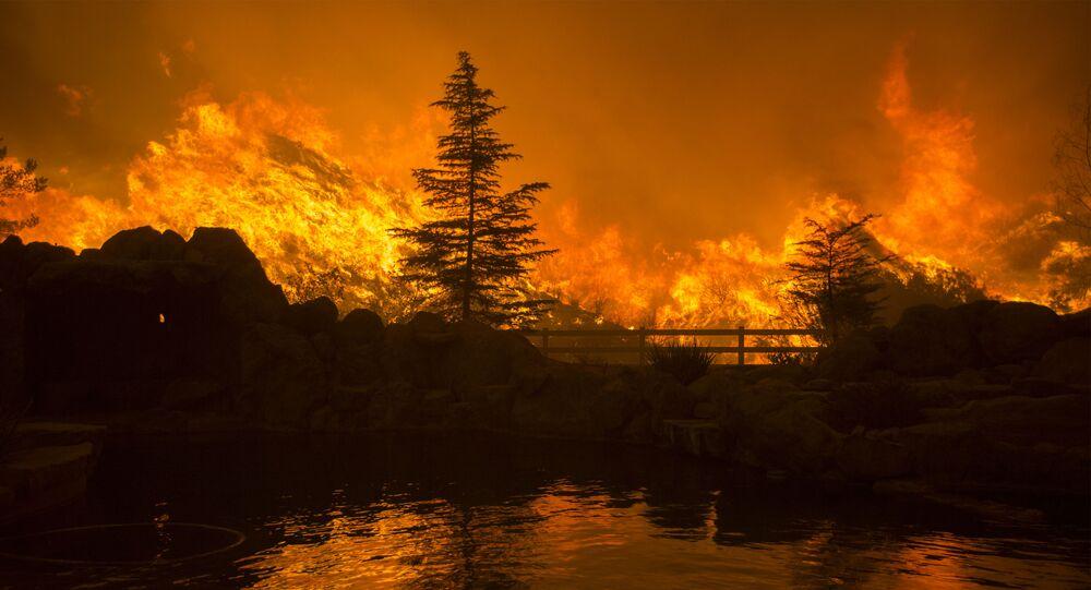 Pożar lasu w Kalifornii