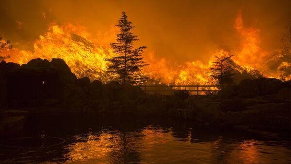 Pożar lasu w Kalifornii - Sputnik Polska