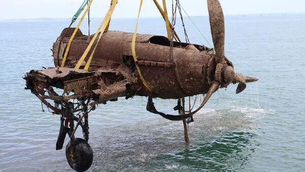 Wydobyty z dna Morza Czarnego samolot szturmowy Ił-2 - Sputnik Polska