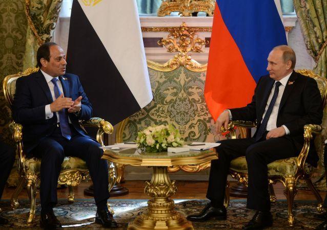 Prezydent Egiptu Abd al-Fattah as-Sisi podczas spotkania z prezydentem Rosji Władimirem Putinem