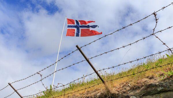 Flaga Norwegii na granicy - Sputnik Polska