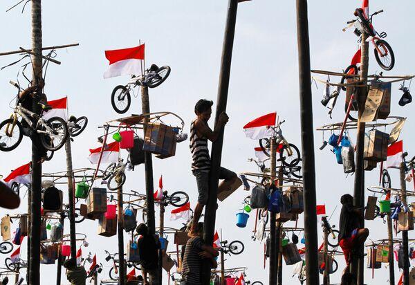 Uczestnicy zawodów Panjat Pinang w Dżakarcie z okazji 71. Dnia Niepodległości Indonezji - Sputnik Polska