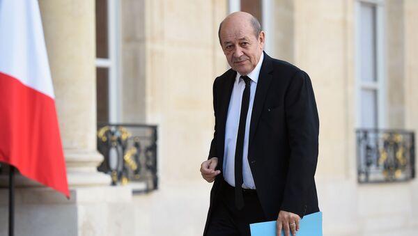 Minister obrony Francji Jean-Yves Le Drian - Sputnik Polska