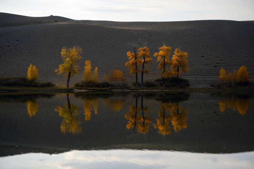 Jesień na Ałtaju