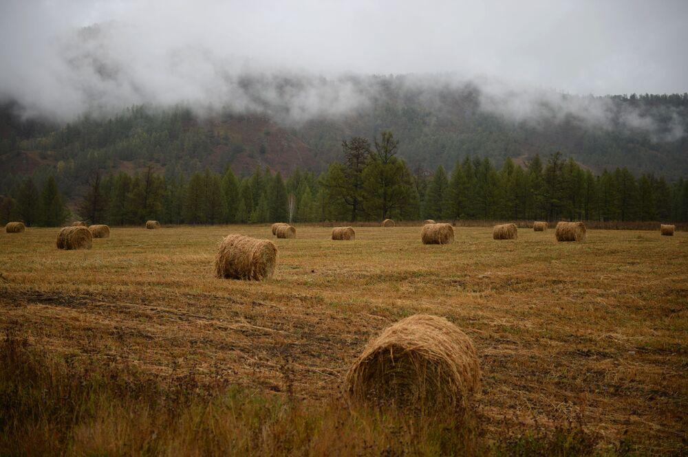 Rejon ongudajski w Republice Ałtaju