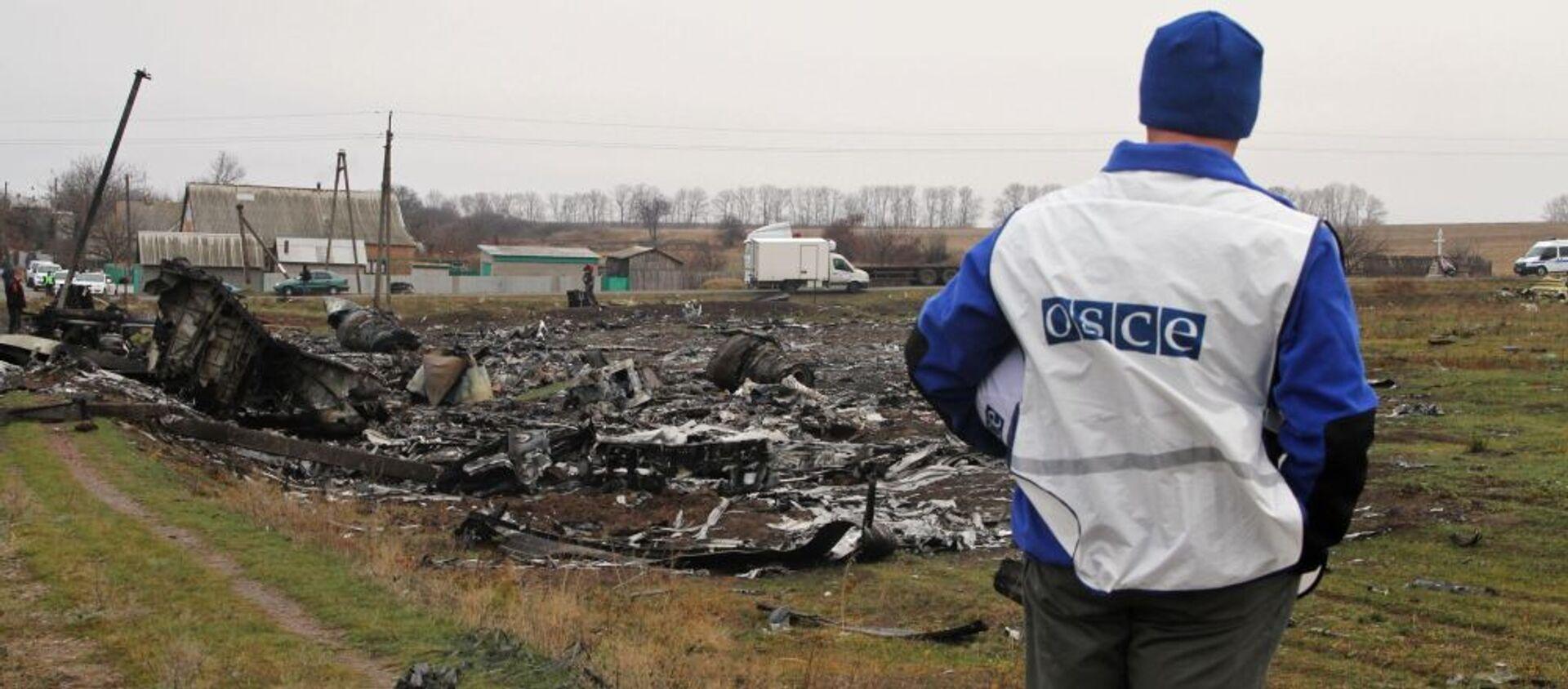 Katastrofa MH17 nad Donbasem  - Sputnik Polska, 1920, 06.02.2021