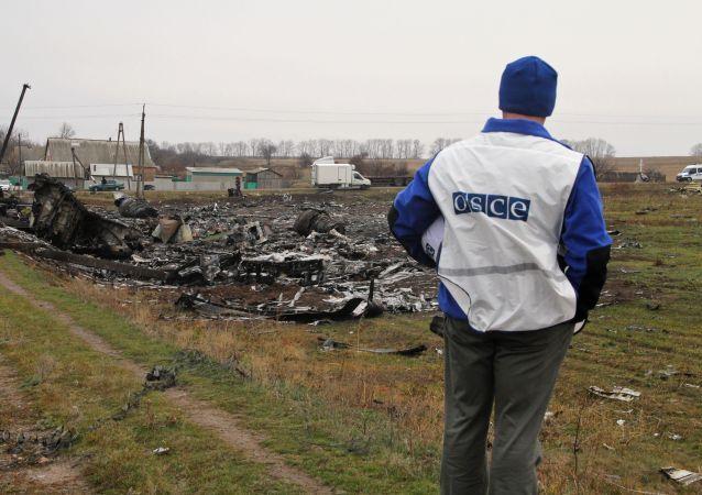 Katastrofa MH17 nad Donbasem