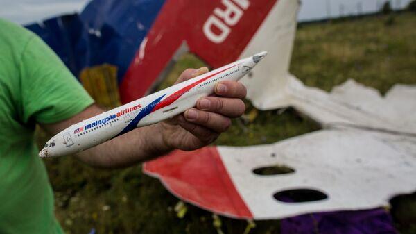Katastrofa Boeinga 777 nad Donbasem - Sputnik Polska