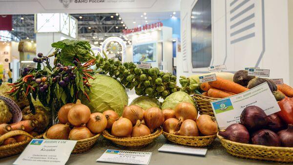 """Eksperci uważają, że niektóre sektory rosyjskiego rolnictwa przechodzą teraz """"agrorenesans"""". - Sputnik Polska"""