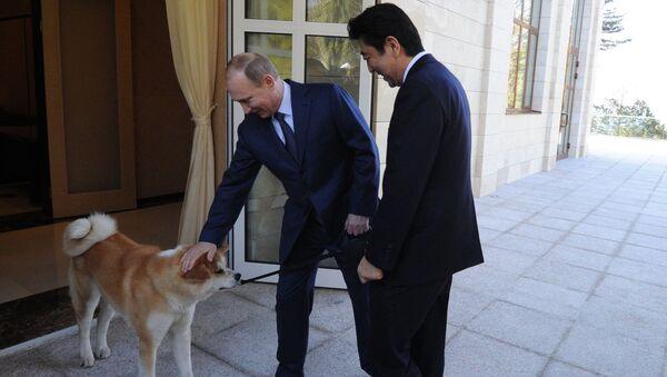 Władimir Putin i Shinzō Abe wraz z psem Jume rasy akito-inu - Sputnik Polska