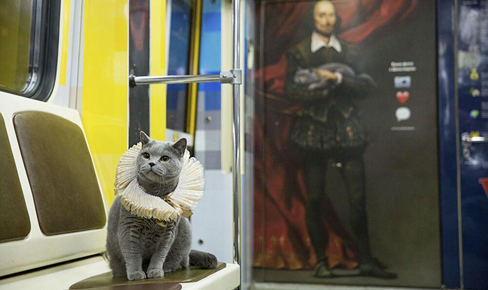 Kot został wybrany nieprzypadkowo, jest to bowiem wierna kopia jednego z bohaterów tego tematycznego pociągu.