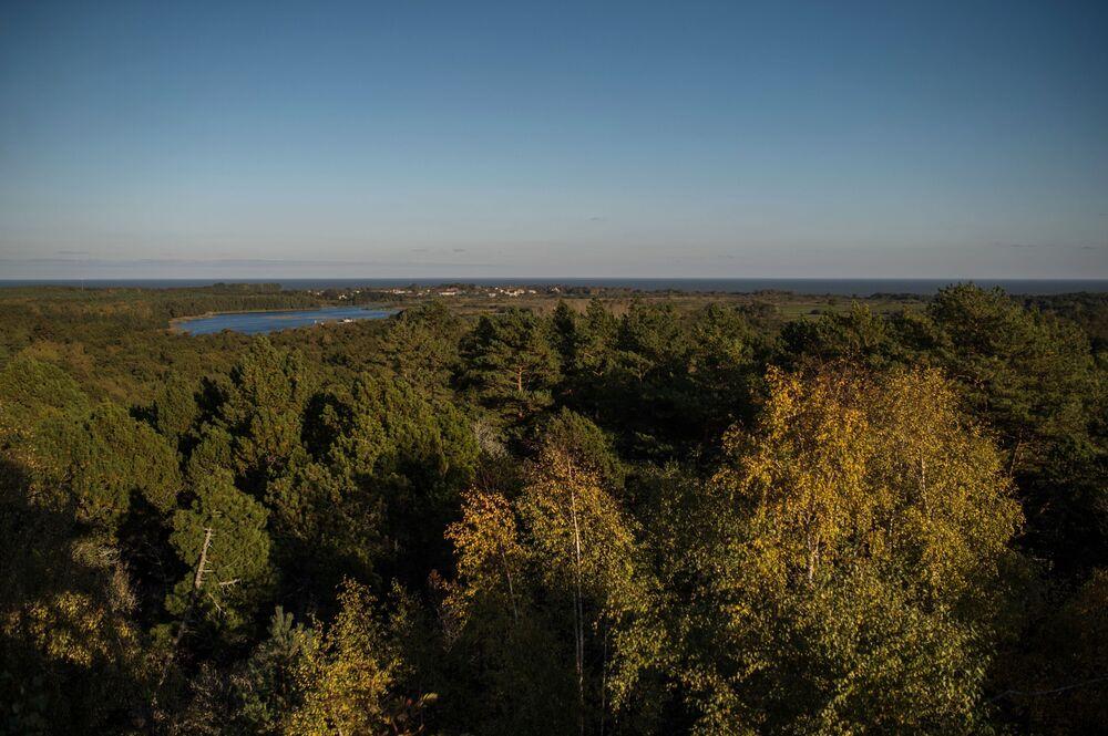 Wzgórze Müllera, którego nazwa wywodzi się od nazwiska leśniczego z Kaliningradu, który wymyślił nowy sposób sadzenia lasu, tak, żeby zatrzymać ruch wydm. Możliwe, że to właśnie on uratował osadę Rybaczyj od zasypania piaskiem. Wzgórze Müllera znajduje się na 31 kilometrze mierzei, wiedzie do niego trasa dla pieszych.