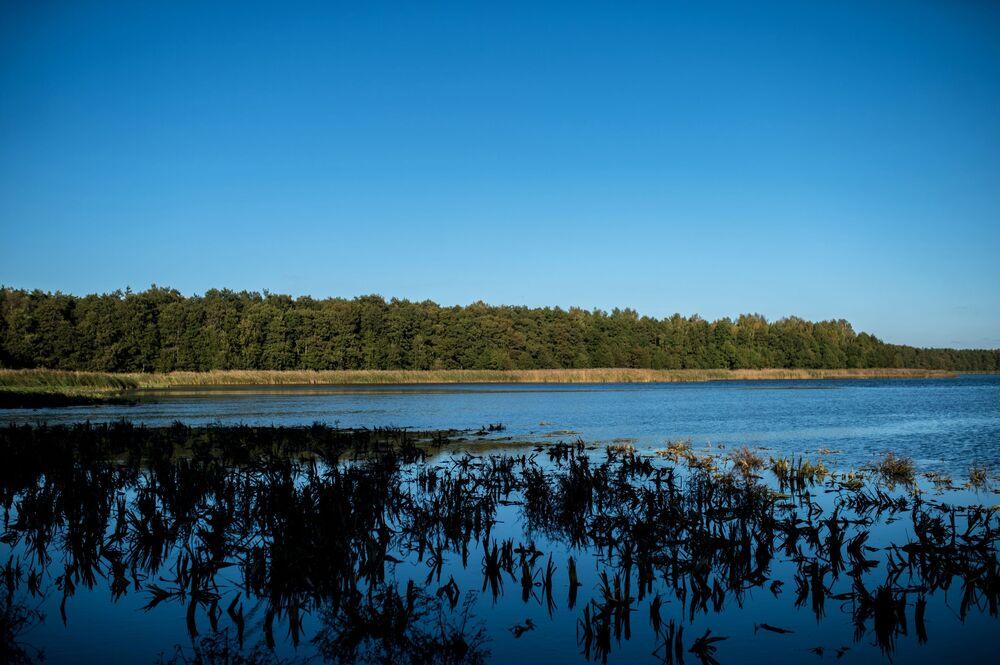 Największe jezioro Mierzei Kurońskiej - Czajka, wcześniej zajmowało jeszcze większą powierzchnię, ale w XIX wieku wiatr zaczął przenosić do wody piasek z Bołotnej wydmy i rozmiar jeziora uległ zmniejszeniu.