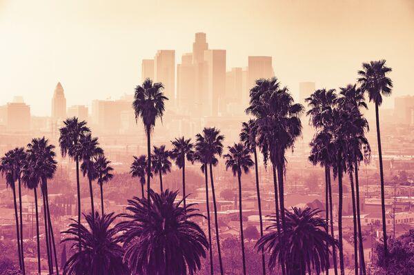 Dużą popularnością wśród turystów cieszy się Los Angeles w USA. Jedną z głównych jego atrakcji jest Hollywood, miejsce znane jako kolebka amerykańskiej kinematografii. - Sputnik Polska