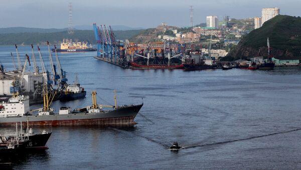 Widok na port i statki w zatoce Złoty Róg we Władywostoku - Sputnik Polska