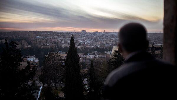 Widok na Aleppo - Sputnik Polska