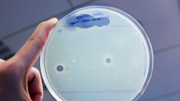 Antybiotyki odkryte w ciele człowieka - Sputnik Polska