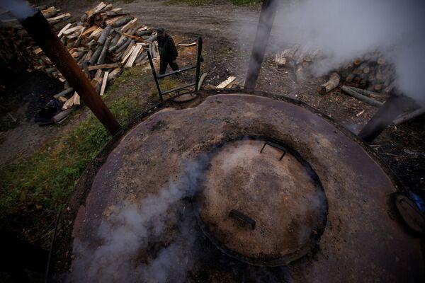Wypalacz węgla Zygmunt Furdygiel sprawdza pracę pieca węglowego - Sputnik Polska