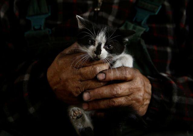 Węglarz trzyma kotka na rękach