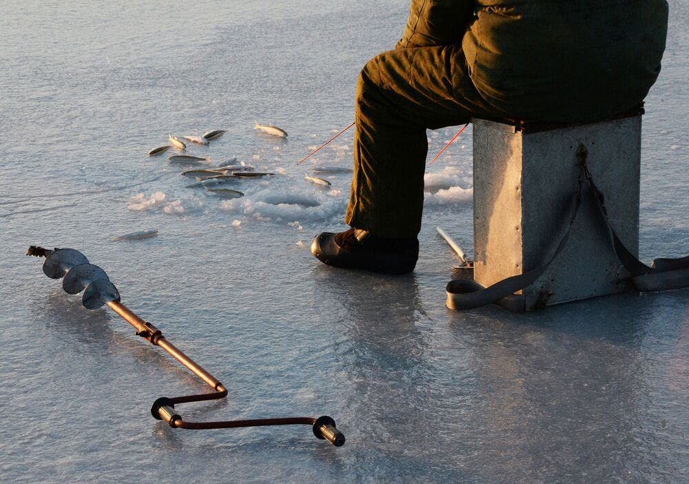 Połów stynki pod lodem nad zatoką Amurską i przy Wyspie Rosyjskiej
