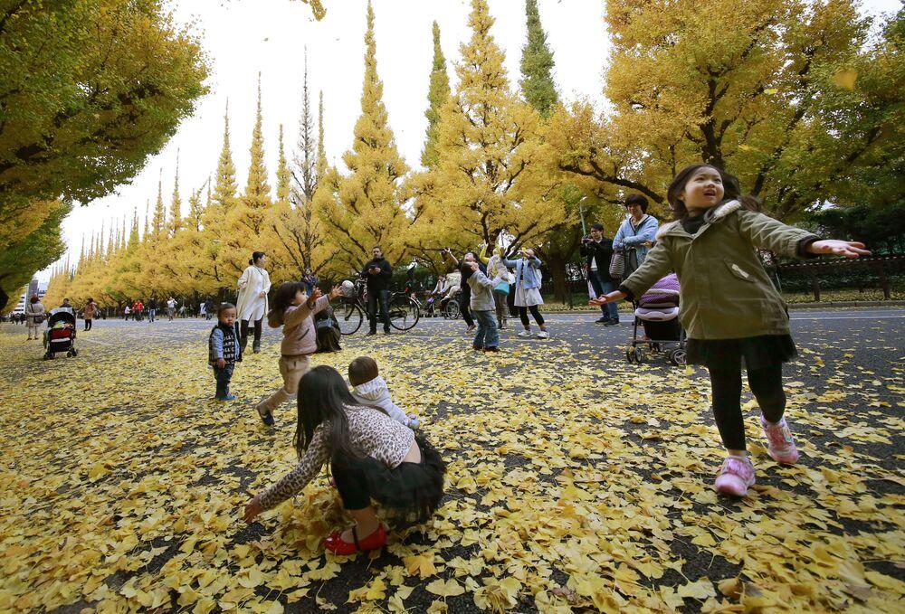 Dzieci grają z opadłymi liśćmi w parku przy świątyni Meiji Jingu w Tokio