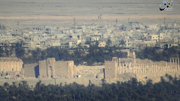 Widok na syryjskie miasto Palmira - Sputnik Polska