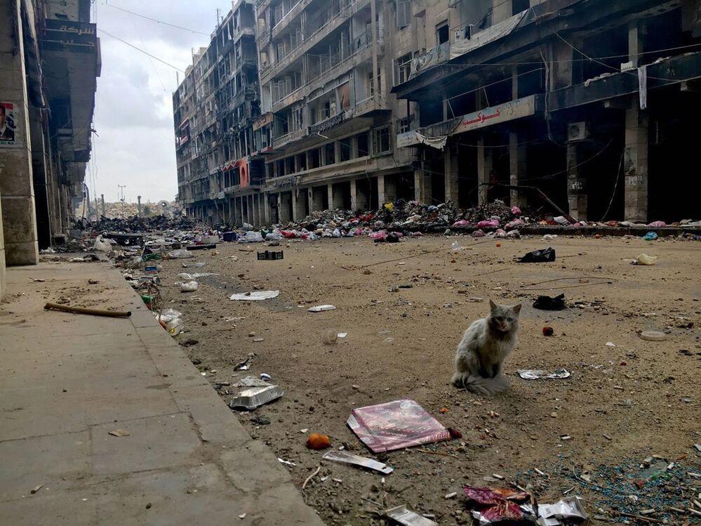 Ulica Starego Miasta w Aleppo w 2016 roku