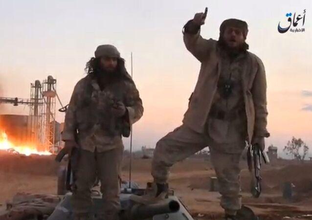 Terroryści Daesh w okolicach Palmiry