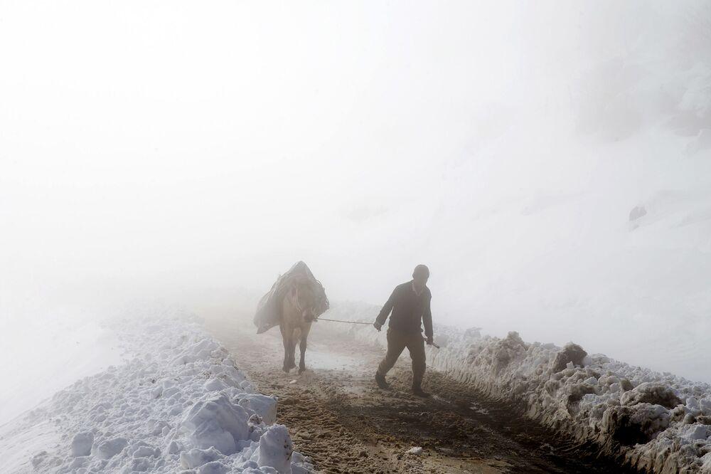 Irański pasterz ze swoim koniem w Górach Tałyskich