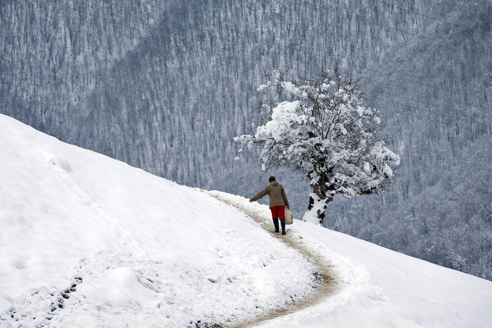 Irański pasterz w Górach Tałyskich