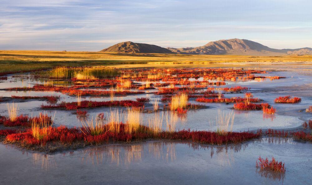 """Kotlina Uwska łączy wiele ekosystemów i stanowi """"zbiór"""" prawie wszystkich ekosystemów lądowych strefy klimatu umiarkowanego."""