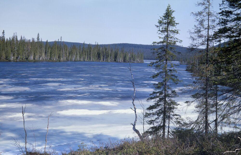 Rezerwat Lapoński to jeden z największych chronionych rezerwatów biosfery w Europie. Główną jego wartością jest dzika dziewicza przyroda w stanie pierwotnym.