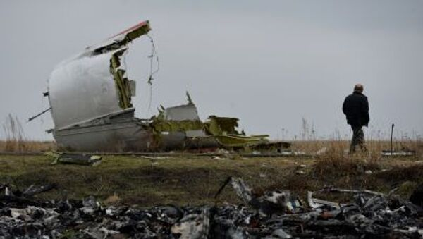 Miejsce katastrofy MH17 - Sputnik Polska