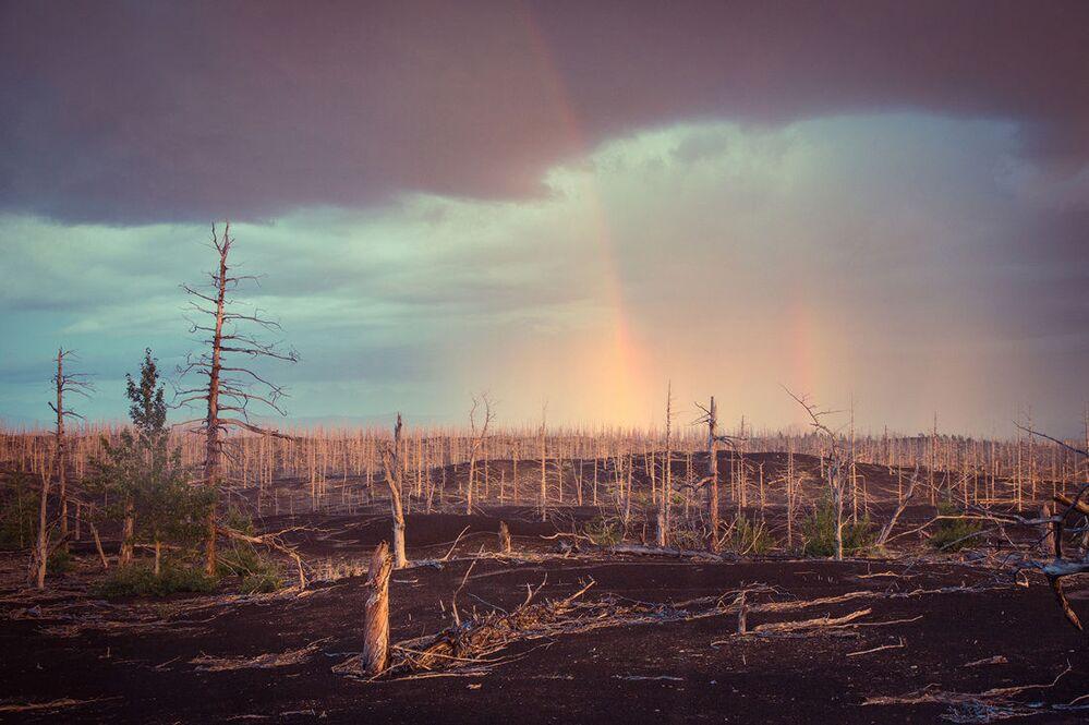 Podwójna tęcza nad lasem zniszczonym podczas erupcji z 1975 roku