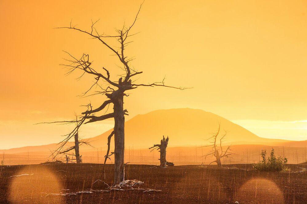 Zachód słońca po deszczu